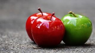 大高美和(管理栄養士)の夫と子供は?りんご博士と娘の障害も解説!