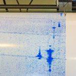 メガマウスザメと地震の前兆の関係とは?南海トラフや過去のデータも紹介!
