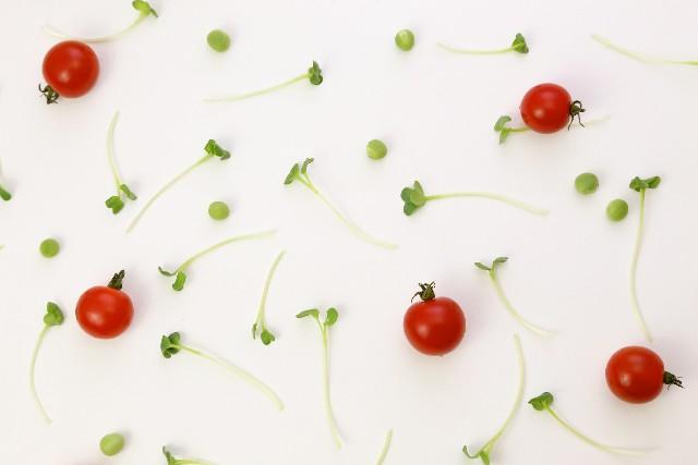 虻川美穂子のかいわれ大根ダイエットの栄養と効果