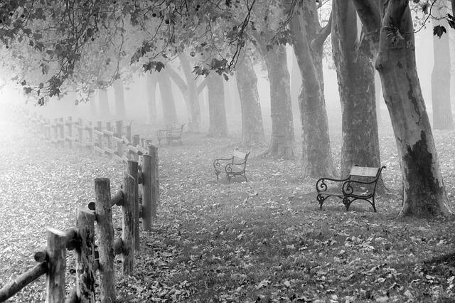 autumn-961745_640