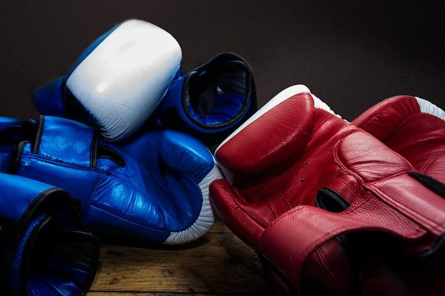 gloves-538264_640