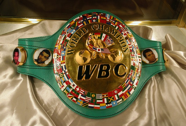 WBC世界チャンピオン